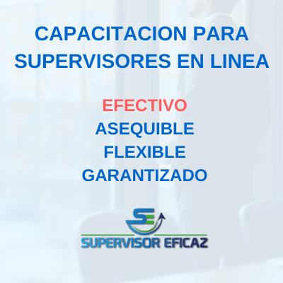 PROGRAMA de capacitacion para supervisores en linea